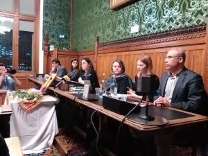 newroz parliament_vs