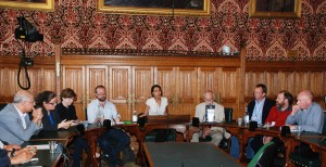 'Witnessing HDP success' meeting, hosted by Kate Osamor MP